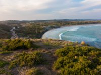 Top 5 Things To Do In Phillip Island