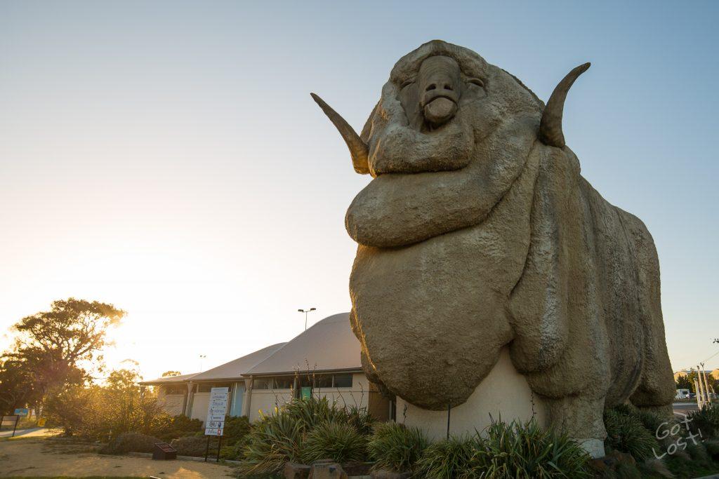 The Big Merino - Hume Hwy