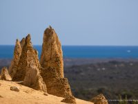 Day Trip to The Pinnacles and Cervantes