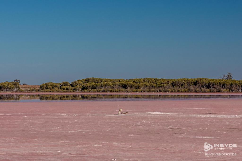 Pink Lake, Western Highway, Victoria