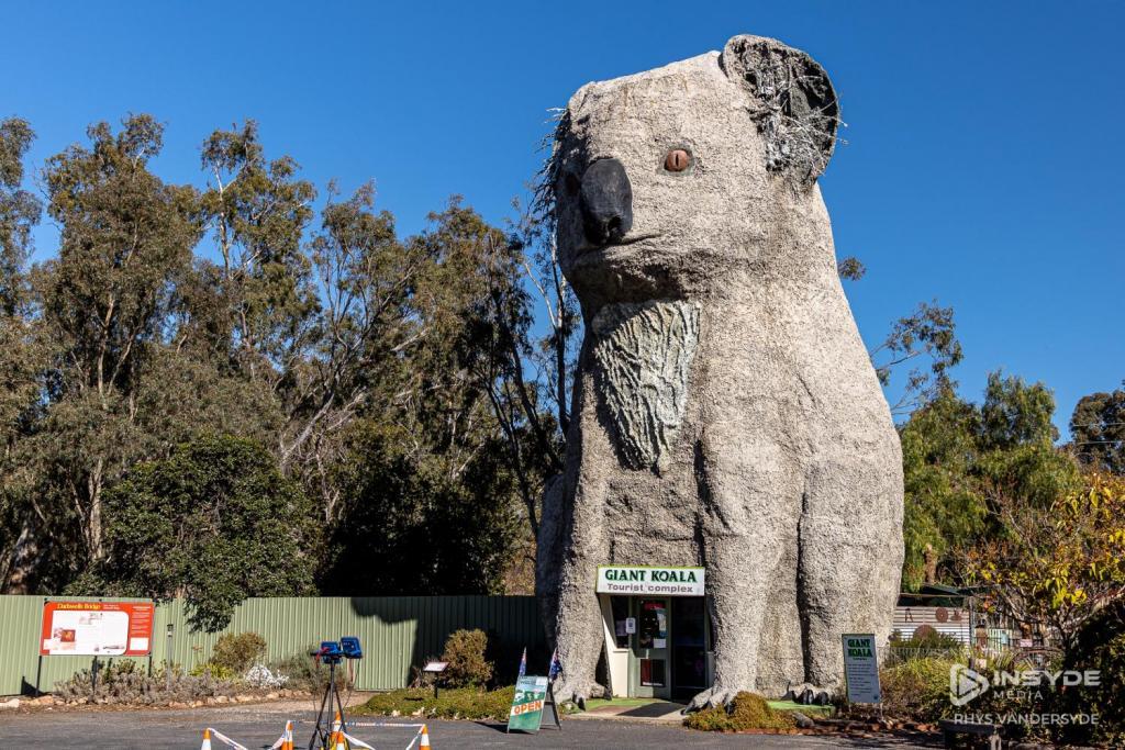 Giant Koala, Western Highway, Victoria